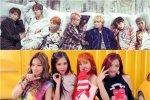 14 เพลง K-Pop ที่ถูกนำไปเล่นบนเครื่องคิดเลข! งานนี้แฟน ๆ ต้องไม่พลาด!!