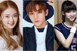 ไอดอล K-POP คนไหนที่อยู่ในกลุ่ม 00 ไลน์ หรือไอดอลที่เกิดในปี 2000 มีใครบ้าง มาดู!