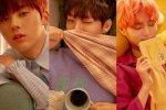 มีรายงานว่า 3 หนุ่มจาก Wanna One จะปรากฏตัวในรายการ Wednesday Food Talk!