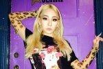แฟน ๆ สงสัยว่าซีแอลได้ออกจาก YG Entertainment เนื่องจากการตอบกลับแฟน ๆ ในอินสตาแกรม
