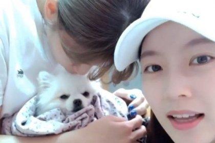 จองยอน TWICE และพี่สาวกงซึงยอน อัปเดตให้แฟน ๆ ทราบเกี่ยวกับอาการป่วยของสุนัข