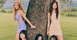 ดีไซเนอร์ Paris Starn บอกว่า SM ได้แก้ไขปัญหาข้อกล่าวหาเรื่องชุดของ Red Velvet แล้ว