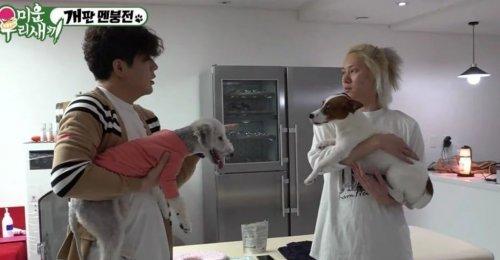 ชินดง Super Junior พูดเกี่ยวกับ เจ้าตูบของเขา ที่ช่วยเขารักษาจากอาการซึมเศร้า