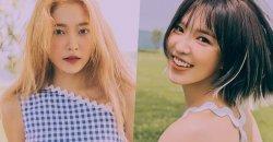 เยริ Red Velvet ได้สร้างรอยยิ้มให้แฟนๆ โดยการแชร์ภาพแชทสุดน่ารักกับ เวนดี้