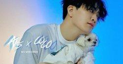 ยองแจ GOT7 เปิดตัวการทำงานร่วมกัน ในสายเสื้อผ้าสุนัข กับ Coco